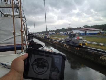 Zafarranchito en el Canal de Panamá