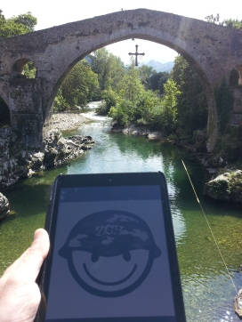 Zafarranchito en Covadonga