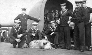 Tirpitz-the-pig-at-Royal--023