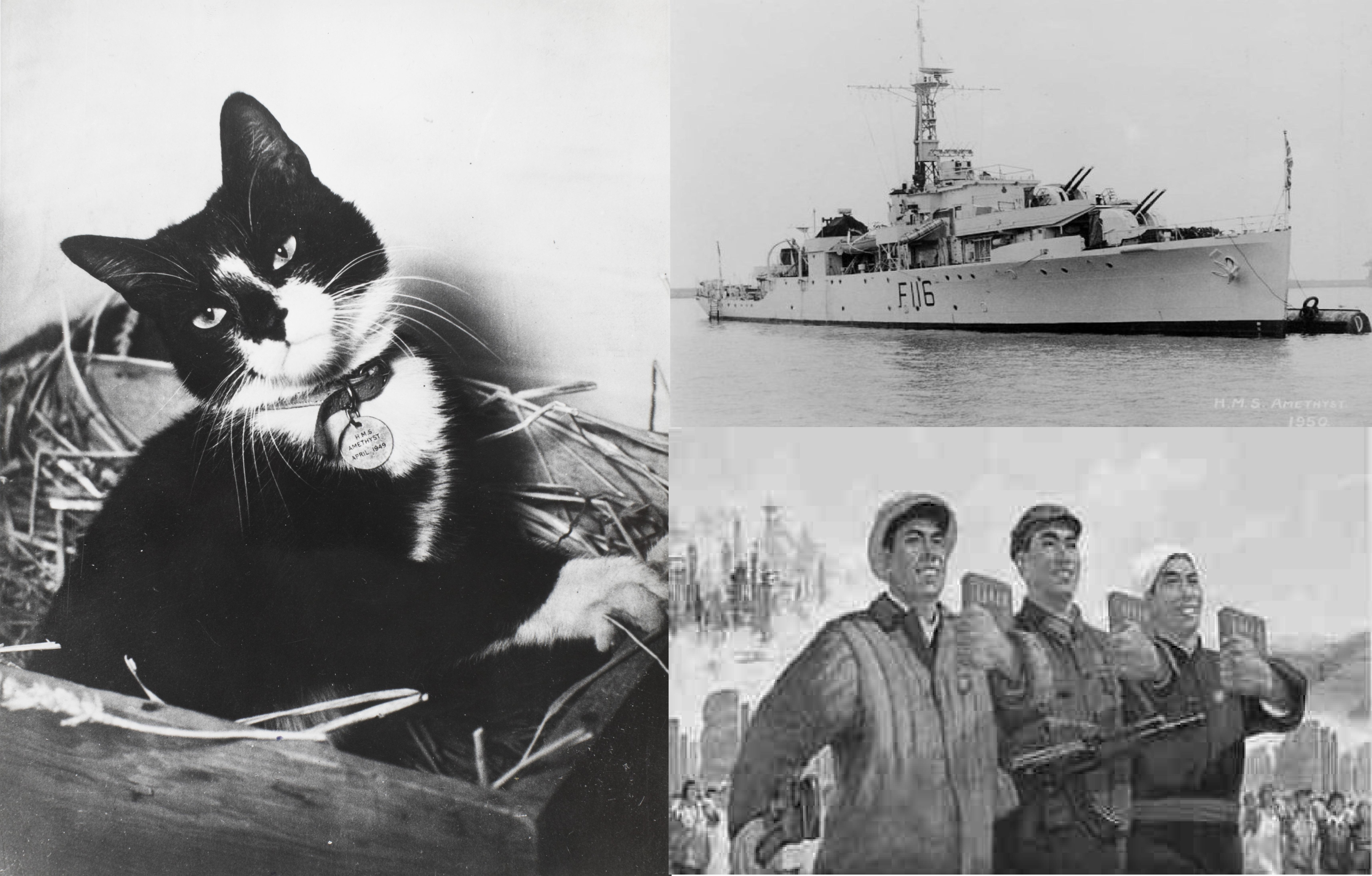 El gato, el barco y los comunistas