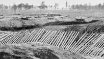 Abbatis lines, picas anti-infantería