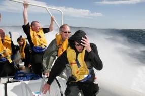 Un grupo de entusiastas navega a 50 nudos a bordo de la T38