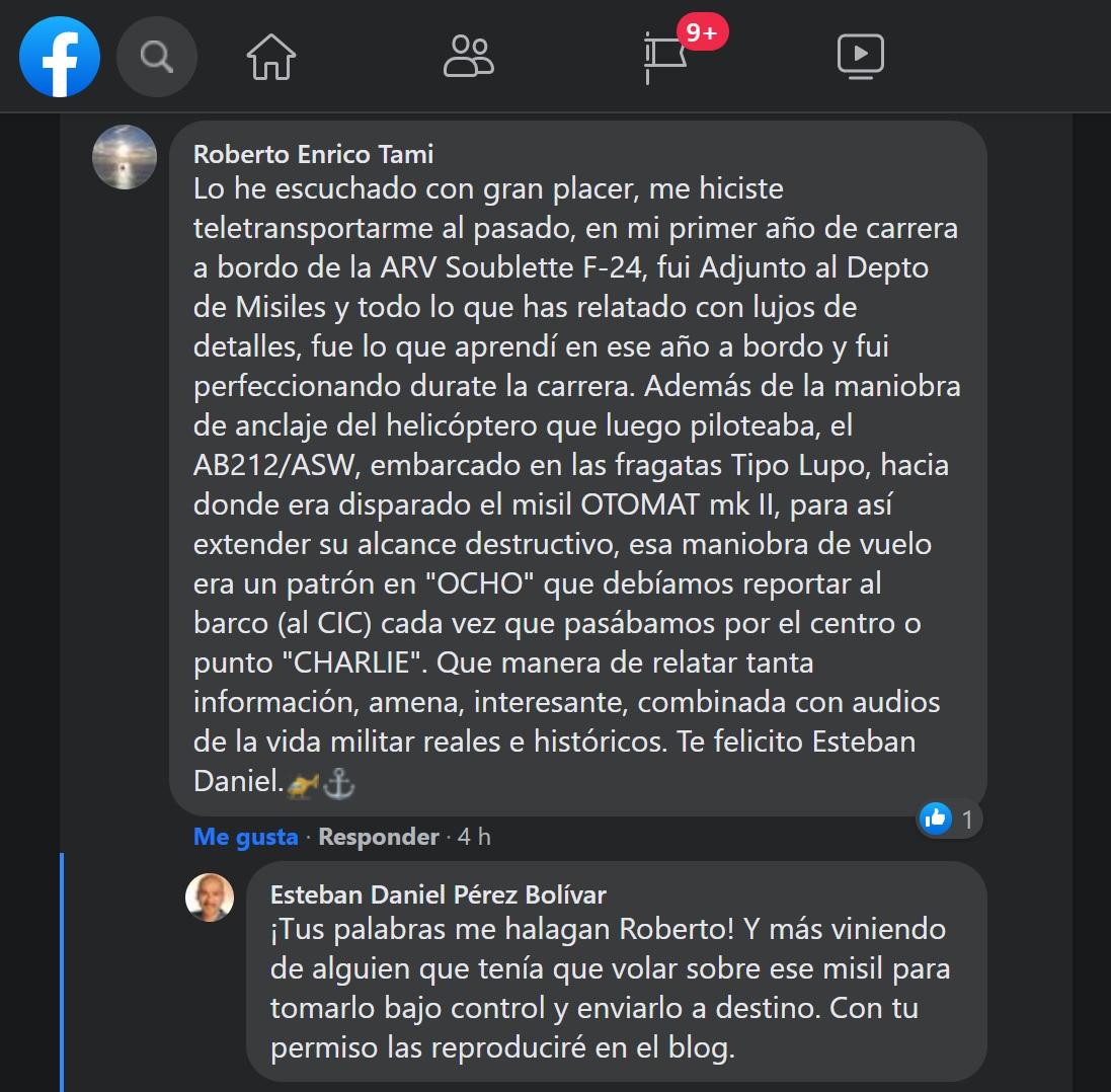 Comentario de Roberto Tami